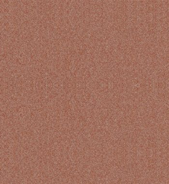 Copper-Nickel-70-30-UNS-C71500-Diamond-Plate