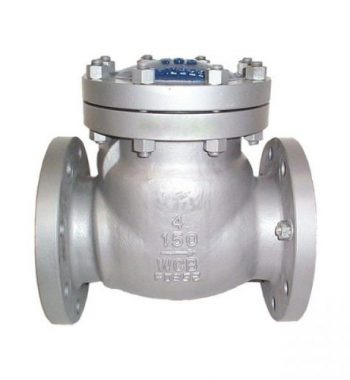 ASME B16.5 Hastelloy Check Valves