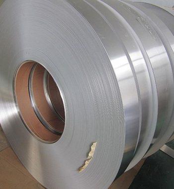 UNS S32750 Strips